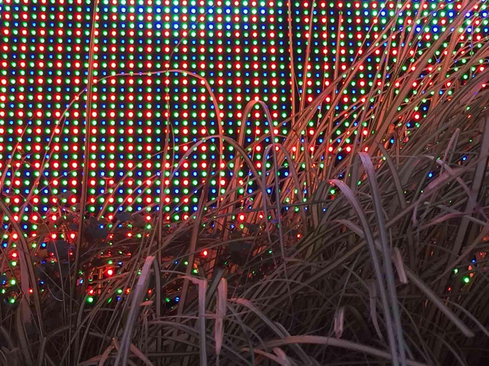 Digital City - John Wild